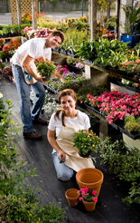 Small flower and garden centre business