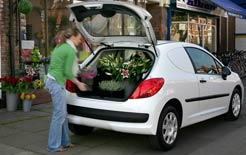 New business van: Peugeot 207 car-derived van